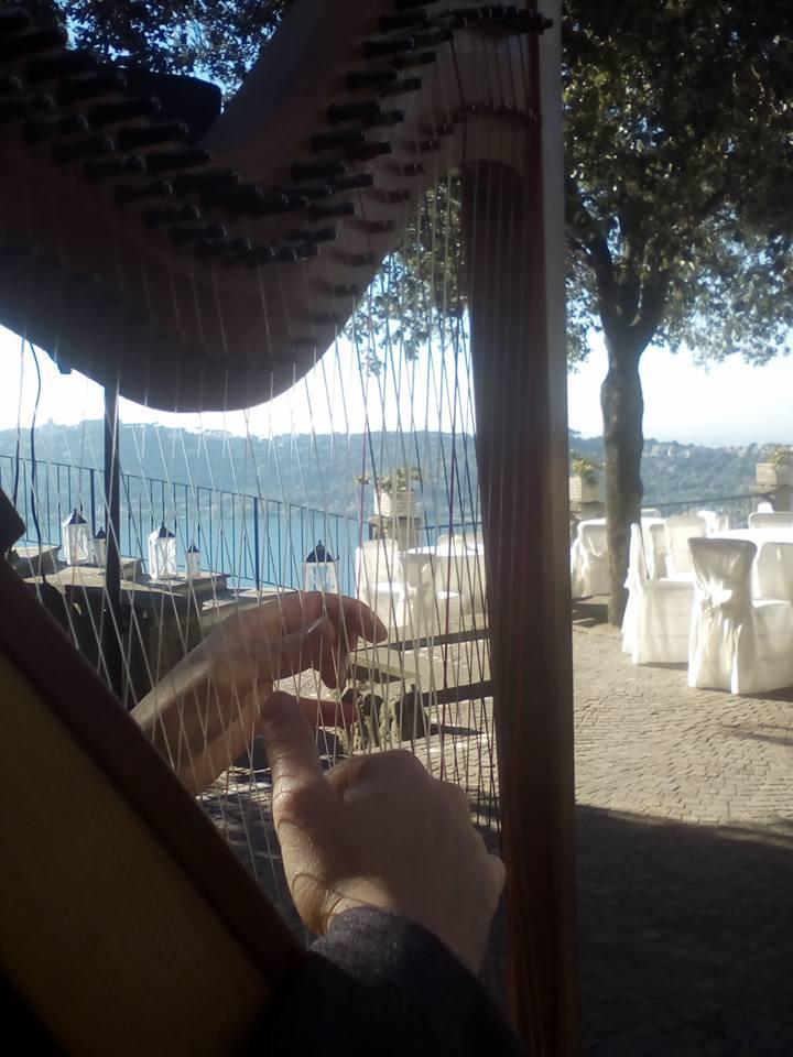 location Jazzharpitude Concert Vanessa D'Aversa M° Cross Strung Harfe 66