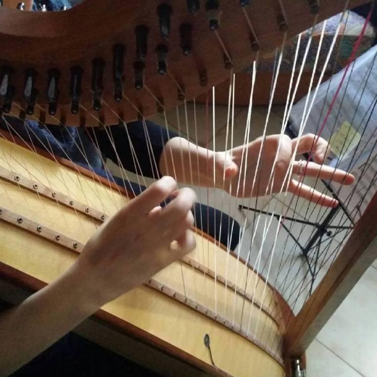 Vanessa D'Aversa M° Cross Strung Harfe 66-5