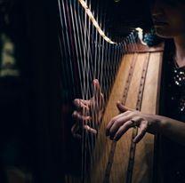 Vanessa D'Aversa M° Cross Strung Harfe 66 n.2
