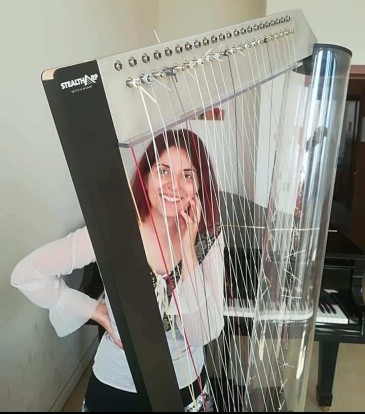 Chromatic Harp 6x6 Stealtharp collaboration with Vanessa D'Aversa 2